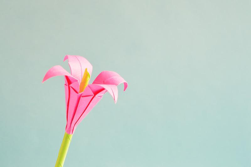 origami flower-low