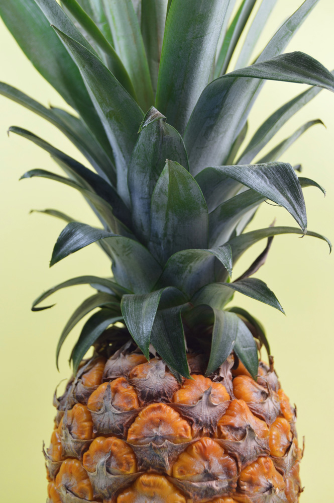 pineapple close up
