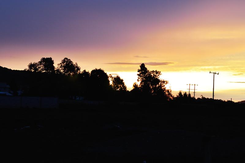 sunrise and trees