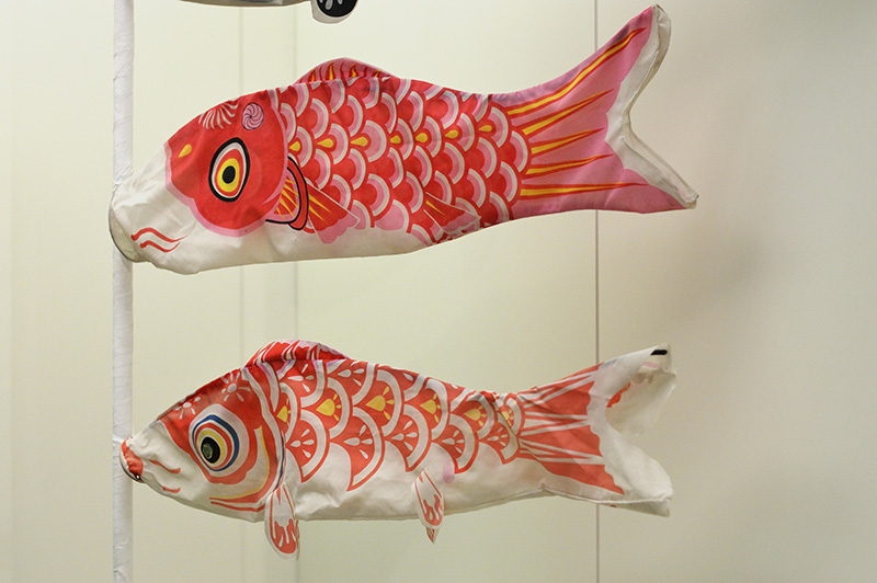 two koinobori carps